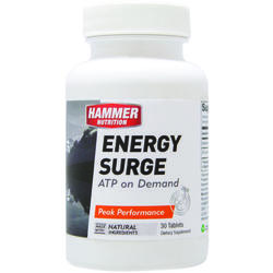 Hammer Nutrition Energy Surge