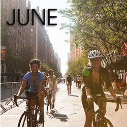 Bicycle Habitat Rentals for June