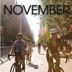 Bicycle Habitat Rentals for November