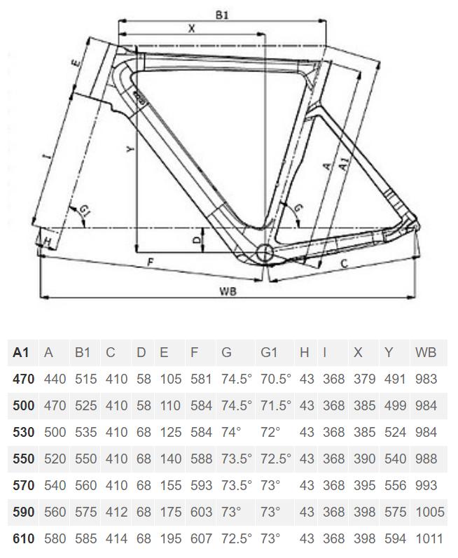 Bianchi Aria E-road geometry chart