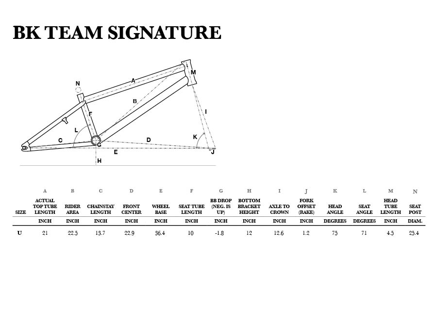 GT BK Team Signature geometry chart