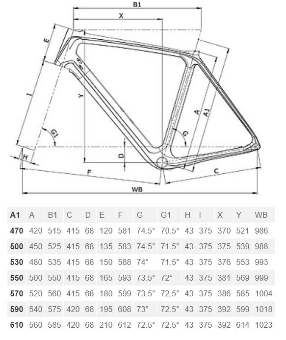 Bianchi Infinito CV Disc geometry chart