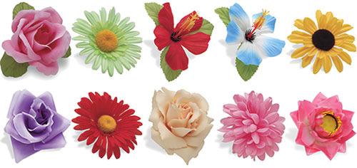 Electra's Handlebar Flowers