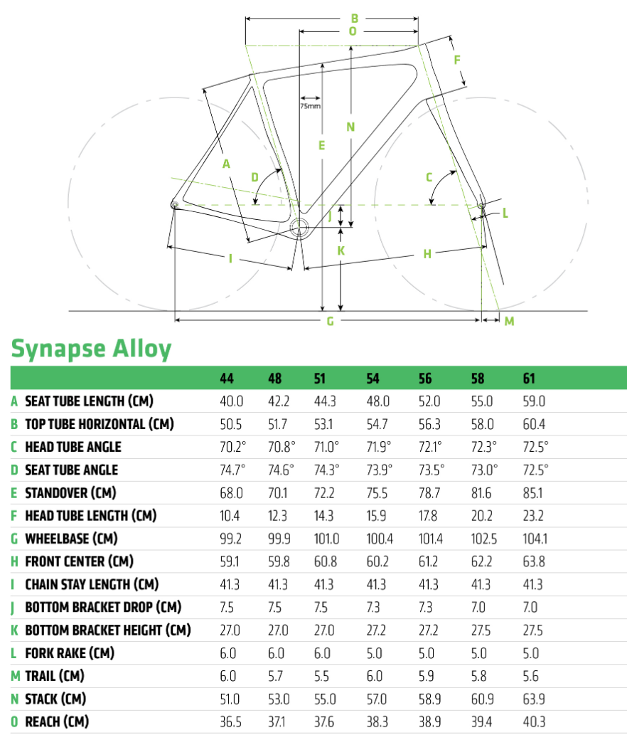 Cannondale Synapse Disc geometry