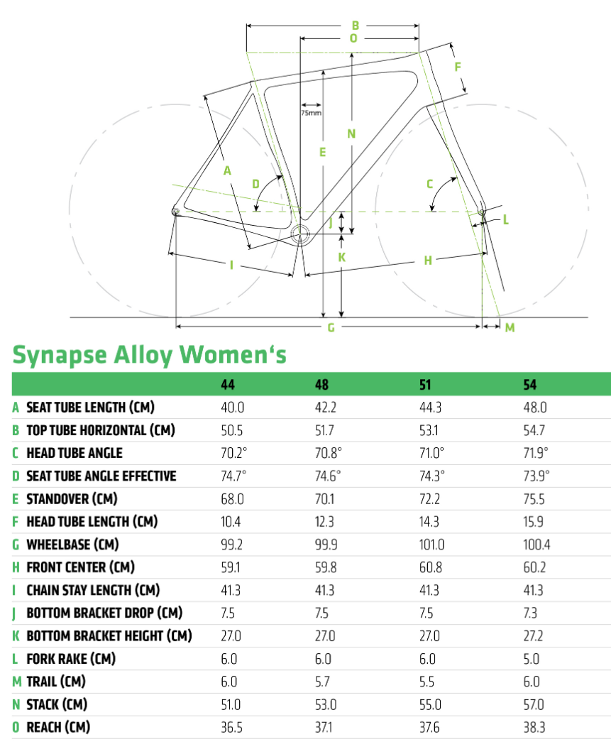 Cannondale Synapse Disc Women's geometry