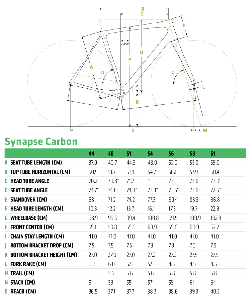 Cannondale Synapse Carbon Disc geometry