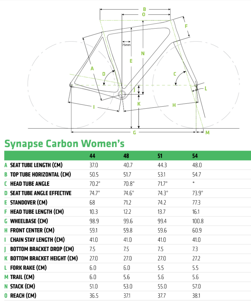 Cannondale Synapse Carbon Disc Women's geometry