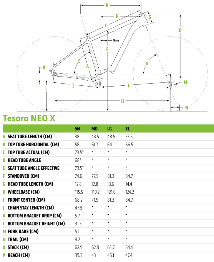 Cannondale Tesoro Neo X Speed geometry chart