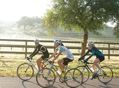 Trek's WSD bikes are tailor-made for women.
