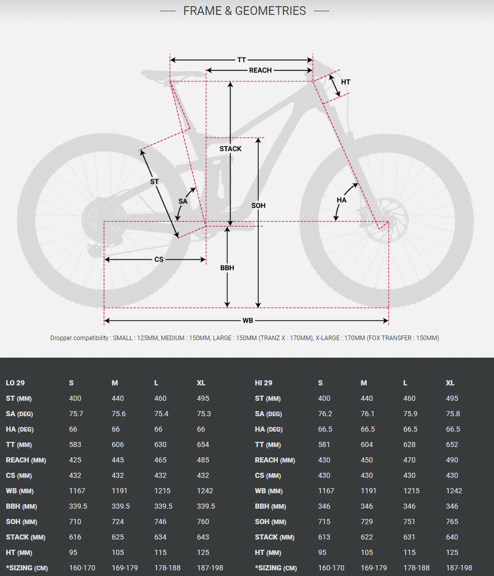 Devinci Troy 29 Carbon geometry chart