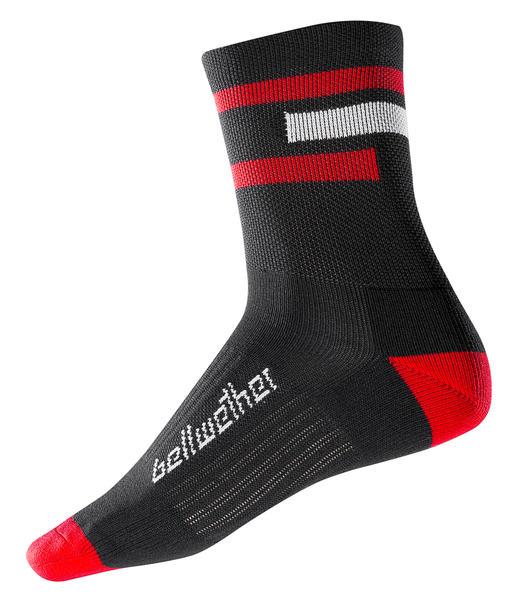 Bellwether Chase Socks