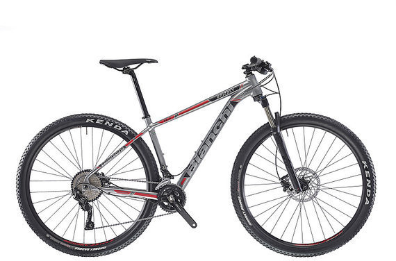 Bianchi Grizzly 29.3 Color: Grey-Black-Red Gloss