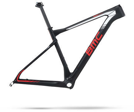 BMC teamelite 01 Frameset Color: Team