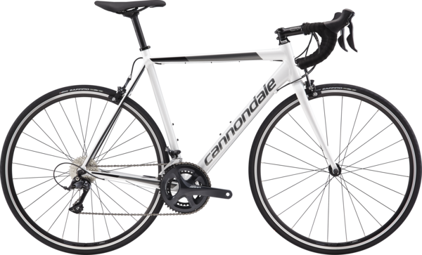 Cannondale CAAD Optimo Sora Color: Cashmere w/Charcoal and Black Pearl