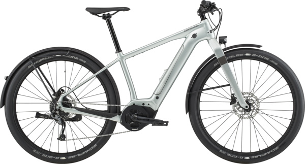 Cannondale Canvas Neo 2 Color: Sage Gray