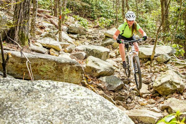 Cannondale Trail 29er 6