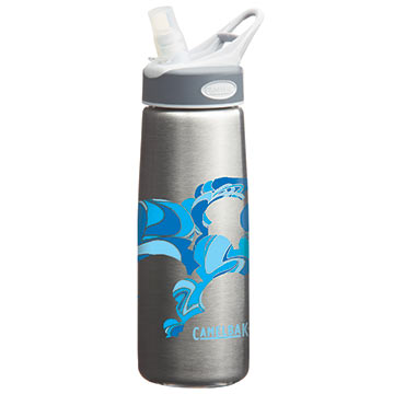 CamelBak .75L Stainless-Steel Better Bottle Color: Fabric