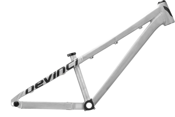 Devinci Sabbath Frame Color: Silver/Black