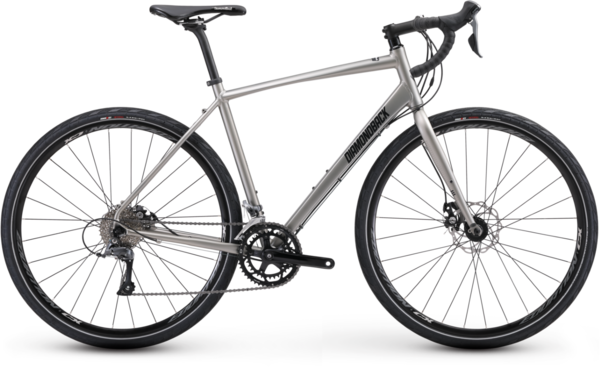 Diamondback Haanjo 2 Color: Matte Silver