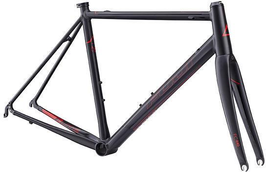 Fuji Roubaix Elite Frame