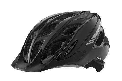 Giant Argus Helmet Color: Black/Gray