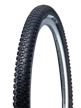 Giant Revel Tire (26-Inch)