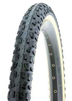 Giant Rocker Trail Fat Tire Color: Black