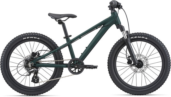 Giant STP 20 FS Color: Trekking Green