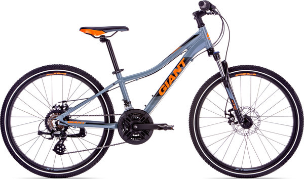 Giant XtC Jr 1 Disc 24 Color: Gray