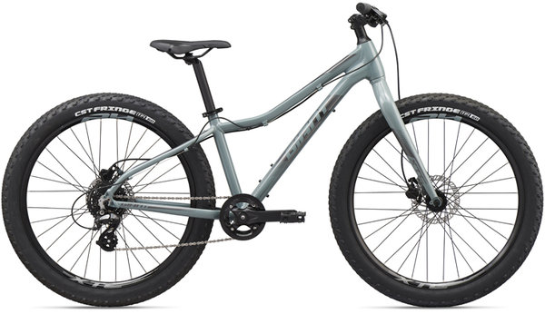 Giant XtC Jr 26+ Color: Gray