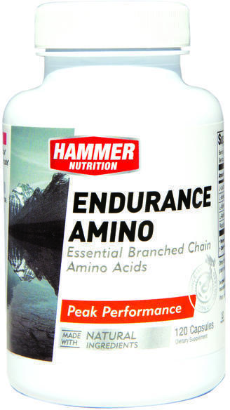 Hammer Nutrition Endurance Amino Caps Size: 120 Capsules
