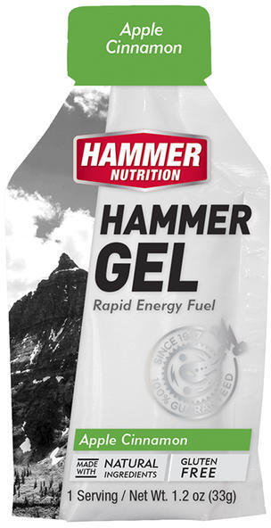 Hammer Nutrition Hammer Gel (24-pack) Flavor: Apple Cinnamon