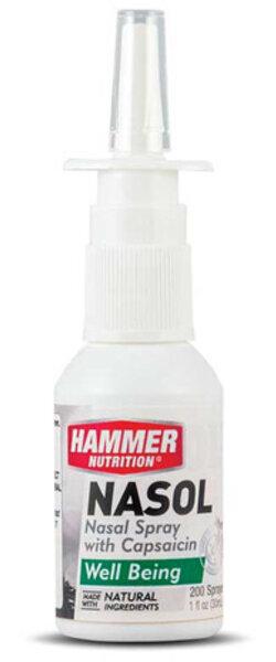 Hammer Nutrition Nasol