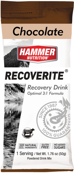Hammer Nutrition Recoverite Flavor | Size: Chocolate | Single Serving