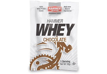 Hammer Nutrition Hammer Whey Protein (Single Serving)