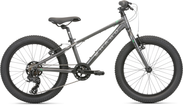 Haro Flightline 20 Plus