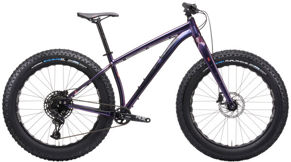 Kona Woo Color: Gloss Prism Purple-Blue