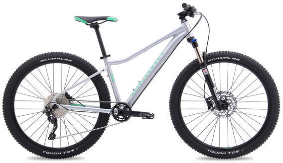 Marin Wildcat Trail 5 Color: Satin Silver w/Teal