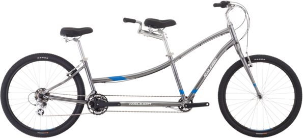 Raleigh Companion Tandem Color: Silver