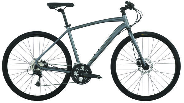 Raleigh Misceo 3.0