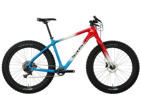 Salsa Beargrease Carbon X1