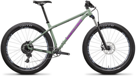 Santa Cruz Chameleon A R+ Color: Gloss Green and Purple