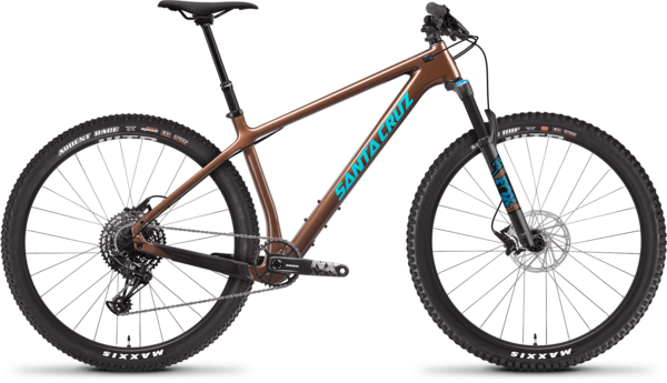 Santa Cruz Chameleon C R 29 Color: Bronze
