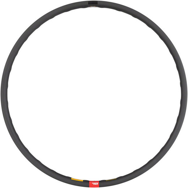Santa Cruz Reserve DH 29-inch Rim Color: Black