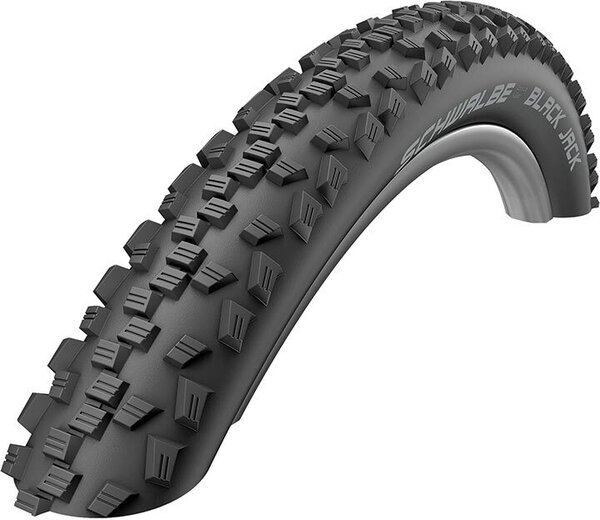 Schwalbe Black Jack 20-inch Color: Black