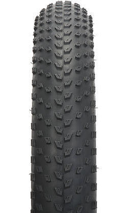 Specialized Big Roller Color: Black