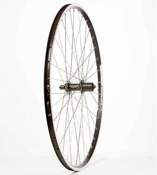 The Wheel Shop Alex Ace19/Shimano Acera FH-T3000 29-inch Front
