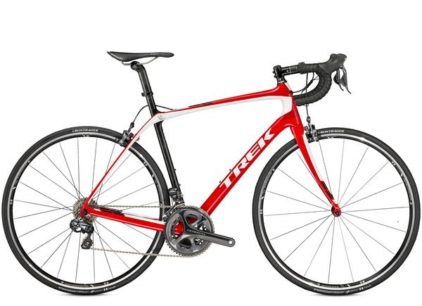 Trek Carbon Road Bike Rentals