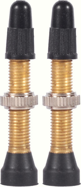 WTB TCS Brass 46mm Valve Stems