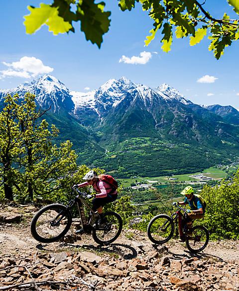 Mountain E-Bikes